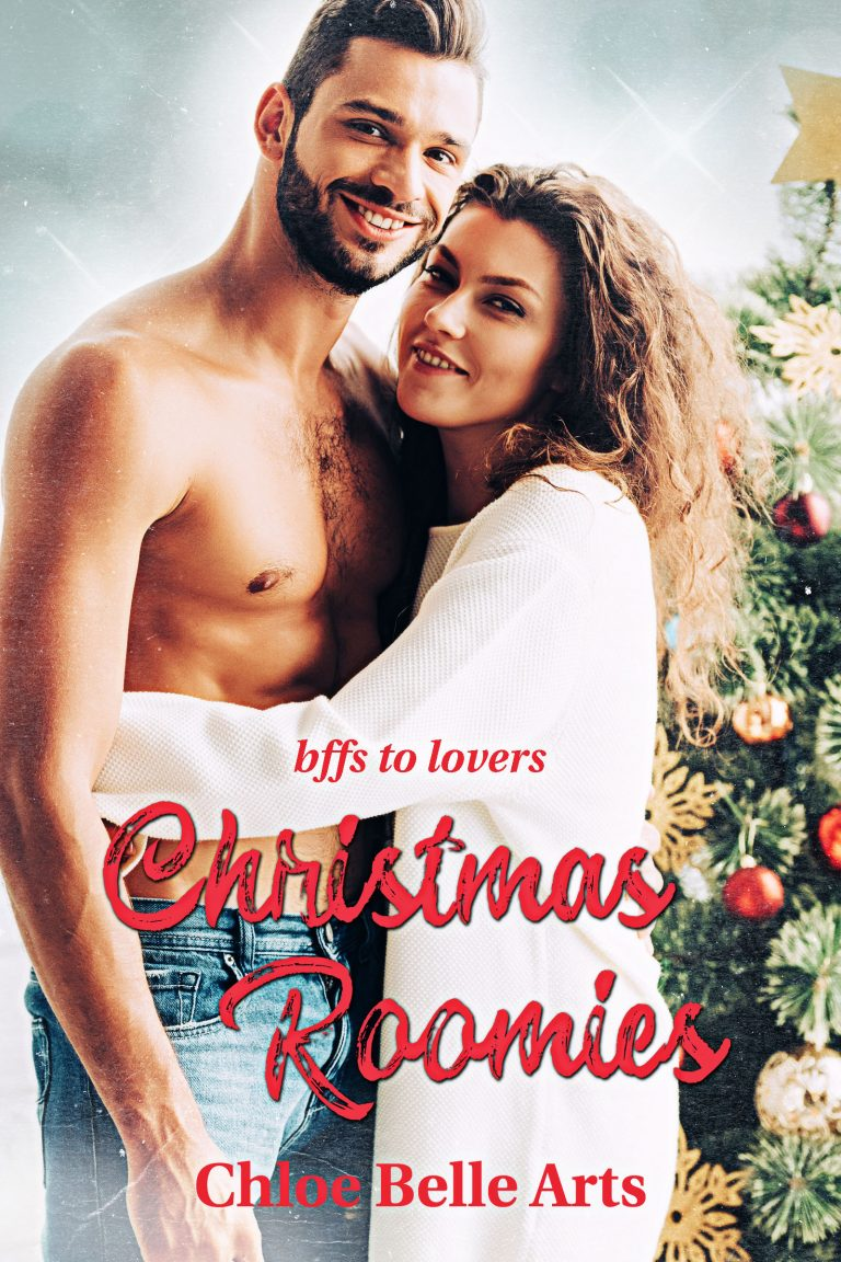 Christmas Pre-made Book Cover